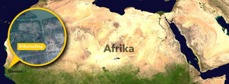 Brikamading-Afrika_DSS